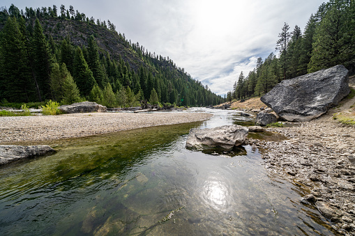 Middle Fork of the Salmon River in Idaho, near Boundary Creek in the summer 1164430602
