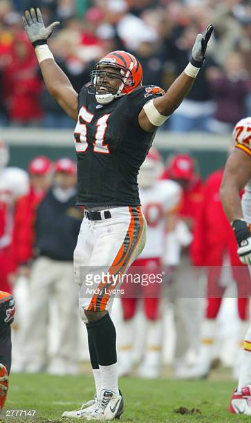 Middle linebacker Kevin Hardy of the Cincinnati Bengals celebrates during the game against the Kansas City Chiefs at Paul Brown Stadium on November...