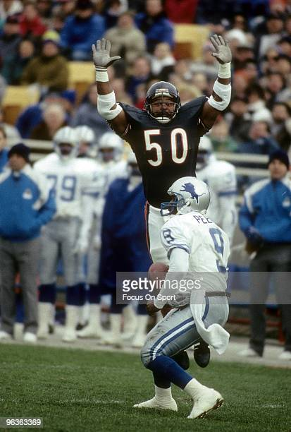 Middle Linebacker Mike Singletary of the Chicago Bears in action putting presure on Quarterback Rodney Peete of the Detroit Lions during a December 2...