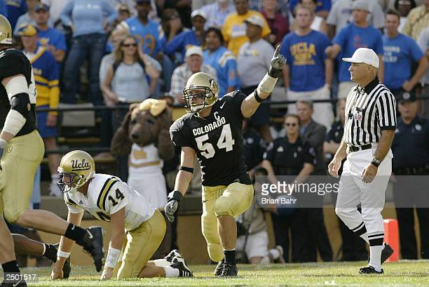 Middle linebacker Sean Tufts of the Colorado Buffaloes celebrates after rushing quarterback Drew Olson of the UCLA Bruins into an incompletion on...