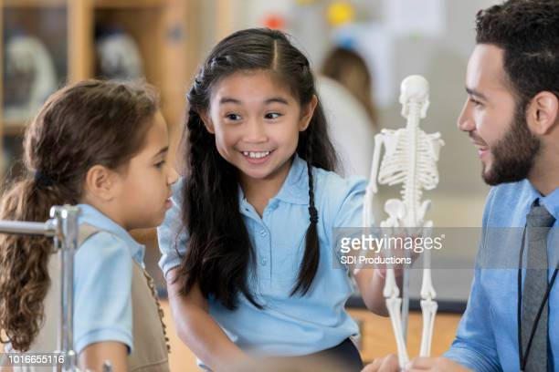 Middle school students enjoy studying human skeletal system