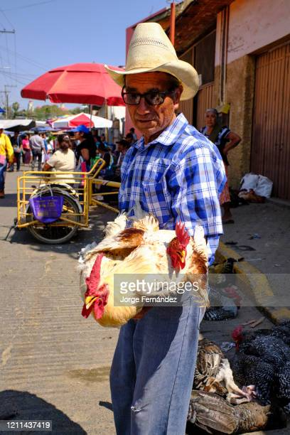Middle-aged man in a straw hat selling chickens at the Zaachila street market.