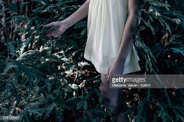 Midsection Of Bride Standing Amidst Plants