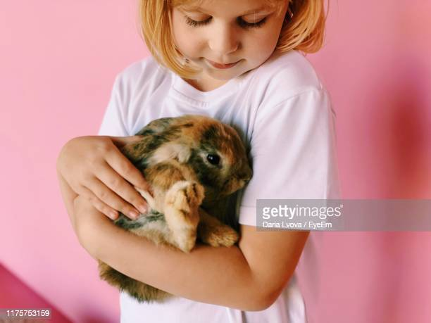 midsection of girl holding rabbit indoors - rabbit stock pictures, royalty-free photos & images