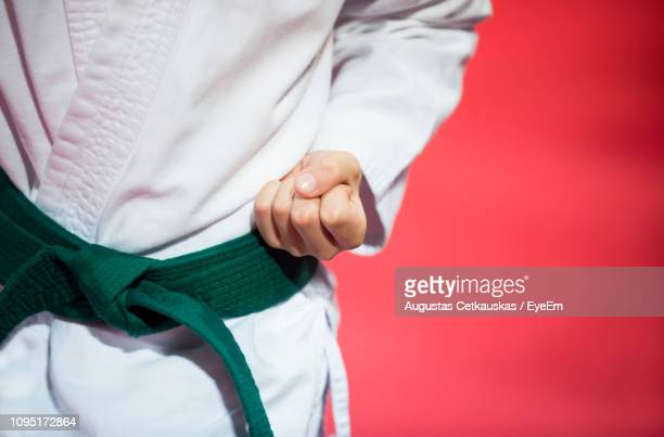 midsection of karate man punching in studio - red belt stock pictures, royalty-free photos & images