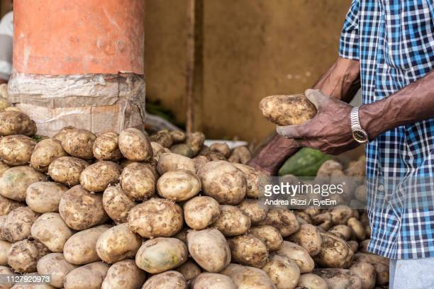 midsection of male vendor selling potatoes at market - andrea rizzi stockfoto's en -beelden