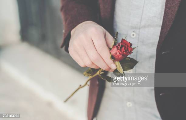 Midsection Of Man Holding A Red Rose