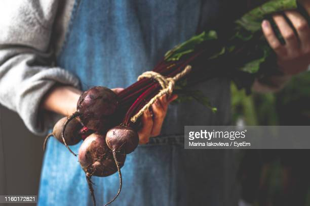 Midsection Of Man Holding Beetroots