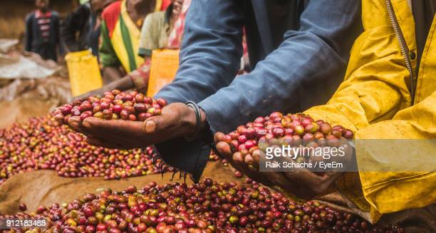 Midsection Of Man Holding Berry Fruits At Market