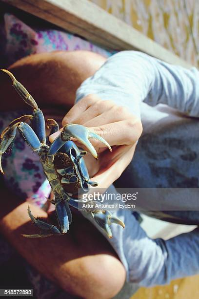 midsection of man holding crab in boat - blue crab stock photos and pictures