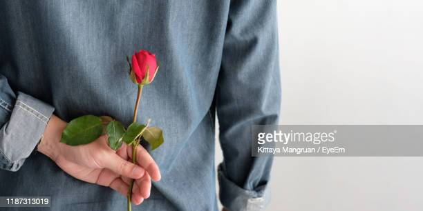 midsection of man holding rose against gray background - hands behind back stock pictures, royalty-free photos & images