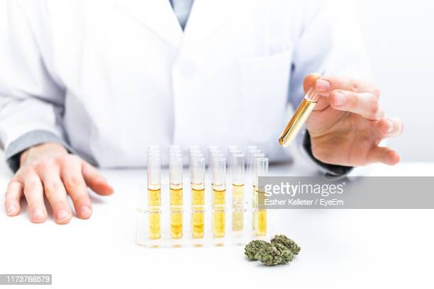 midsection of man holding test tube on table - medical cannabis stock pictures, royalty-free photos & images