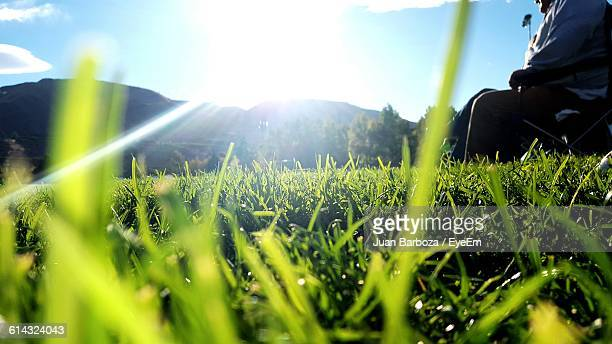 midsection of man on grassy field against bright sky - blade of grass stock pictures, royalty-free photos & images