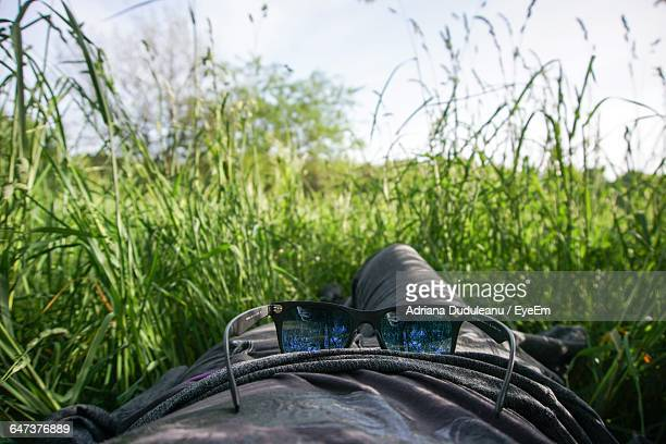 midsection of person with sunglass lying down on grassy field - adriana duduleanu stock photos and pictures