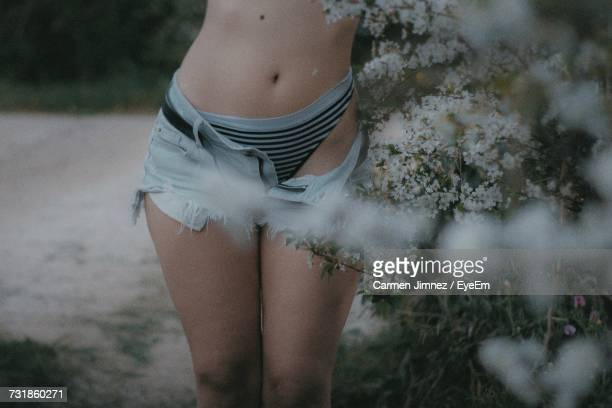 midsection of sensuous woman in hot pants standing by flowers - carmen bella foto e immagini stock