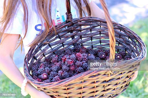 Midsection Of Woman Carrying Blackberries In Basket At Farm
