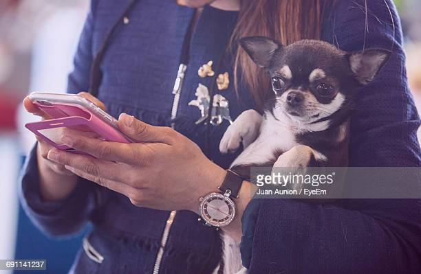 Midsection Of Woman Carrying Chihuahua While Using Mobile Phone