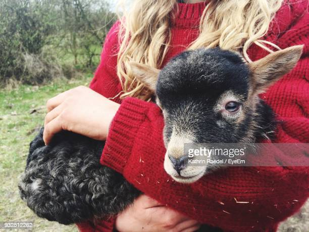 Midsection Of Woman Carrying Kid Goat