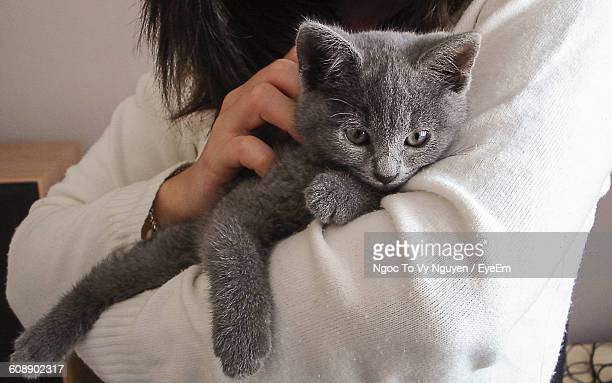 Midsection Of Woman Embracing Gray Cat At Home
