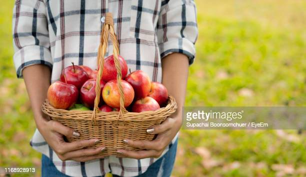 midsection of woman holding basket with apples while standing outdoors - midsection stock pictures, royalty-free photos & images