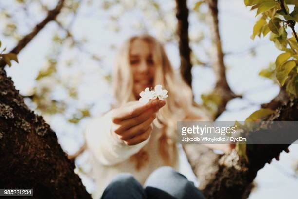 Midsection Of Woman Holding Flowering Plant Against Trees