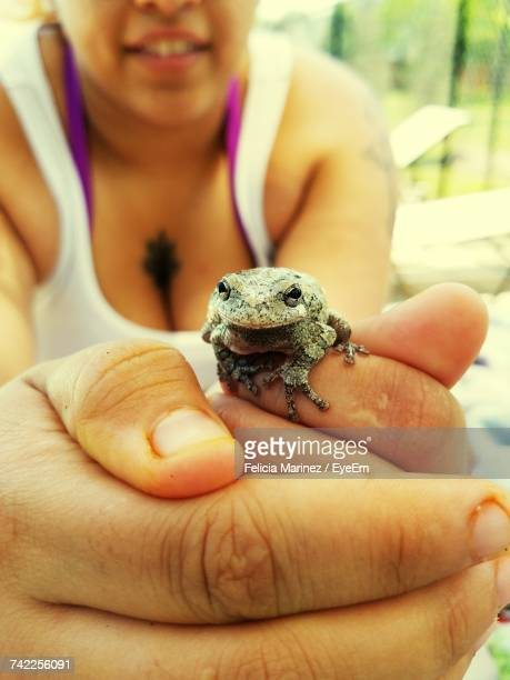 Midsection Of Woman Holding Frog