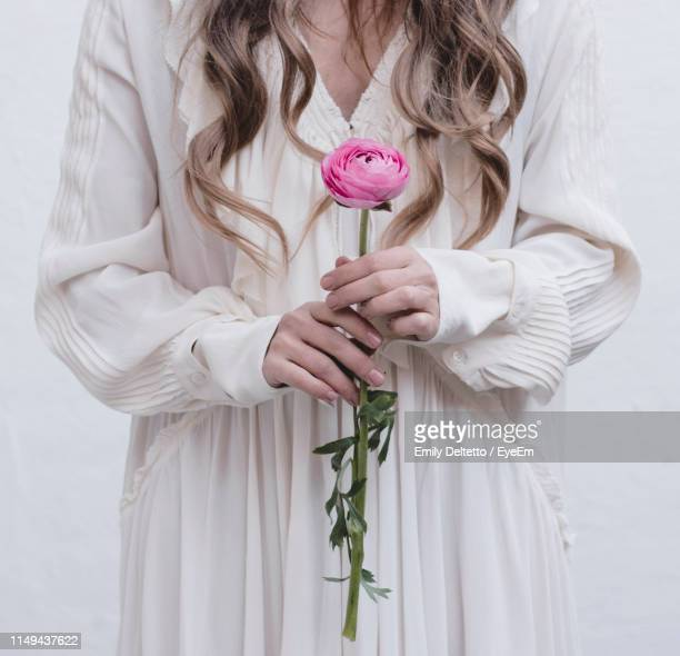 midsection of woman holding pink rose flower - long stem flowers stock pictures, royalty-free photos & images