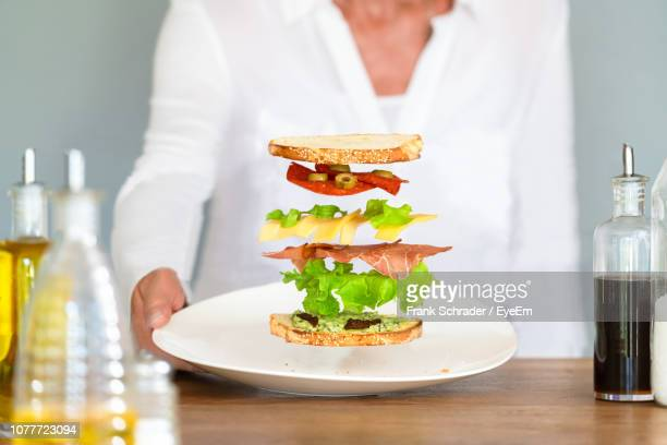Midsection Of Woman Holding Plate