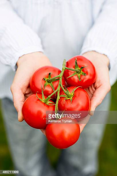 Midsection of woman holding tomatoes