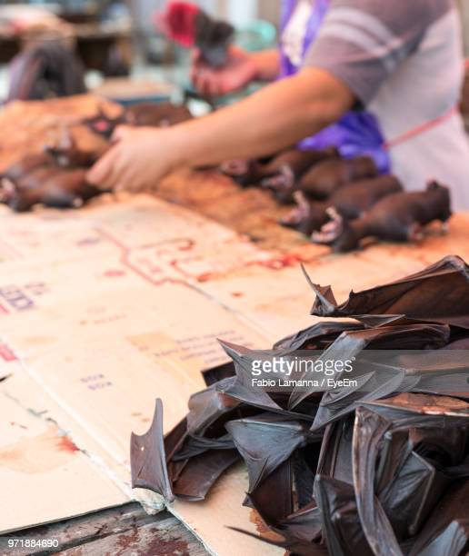 midsection of woman selling bats on food stall at street market - grupo mediano de animales - fotografias e filmes do acervo