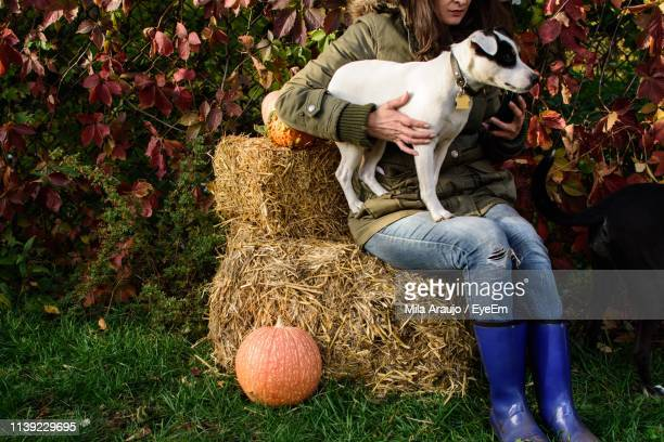 Midsection Of Woman Sitting With Dog On Hay Against Plants