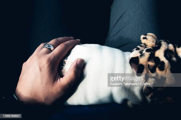 midsection of woman with dog against black background.holding dog - koukichi stock pictures, royalty-free photos & images