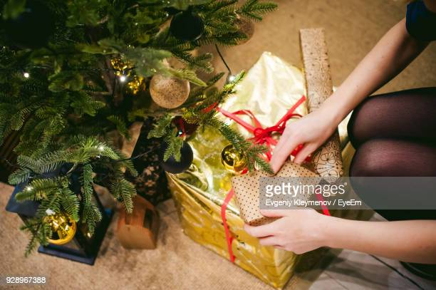 Midsection Of Woman With Gift By Christmas Tree At Home