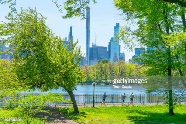 midtown manhattan skyscraper stands through the growing fresh green leaf trees beyond the central park reservoir in central park at new york city ny usa on may. 11 2019. - central park reservoir stock pictures, royalty-free photos & images