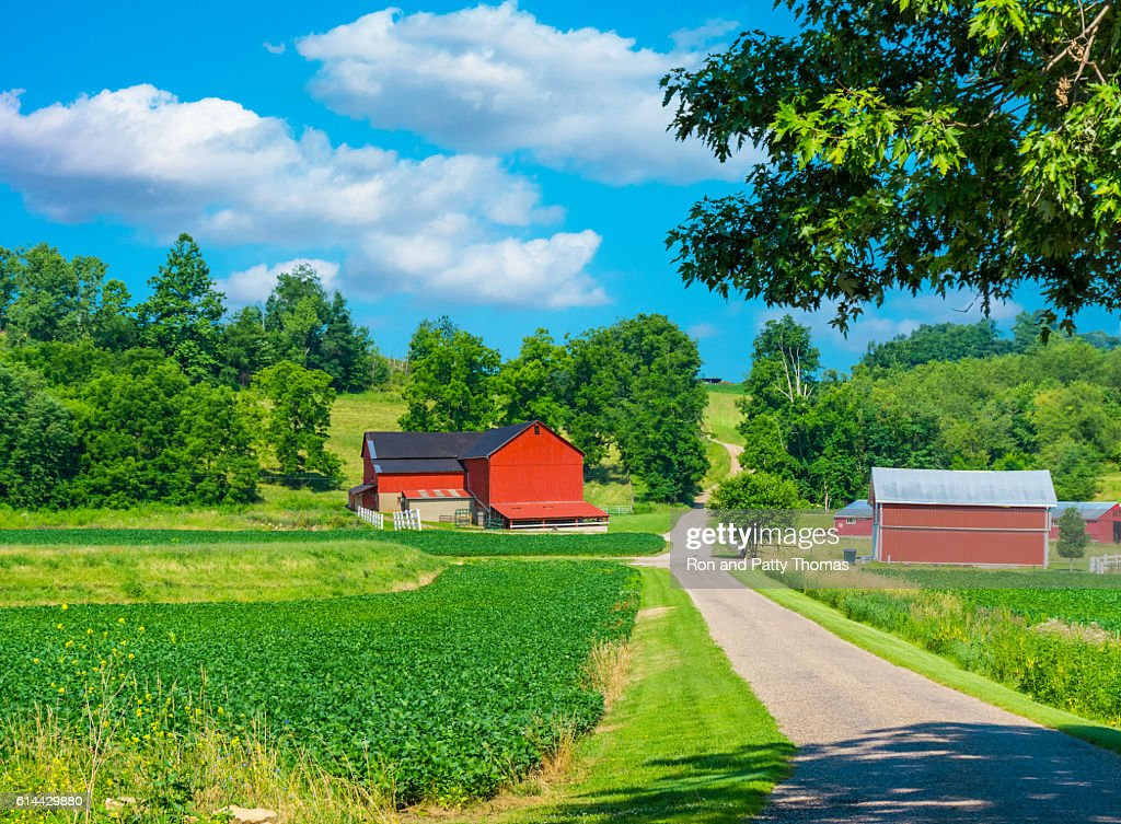 Midwest farm with spring  crop and red barn,USA(P) : ストックフォト