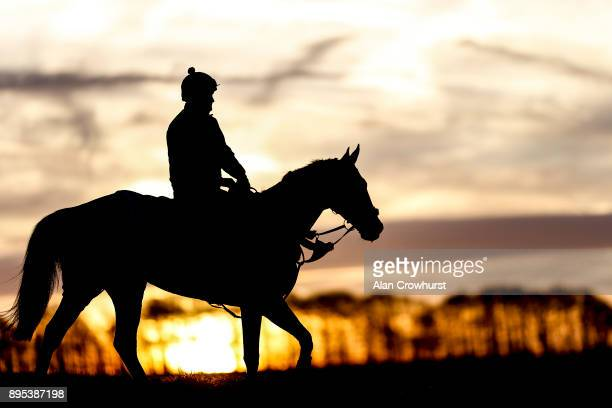 Might Bite after galloping up the all weather track at Nicky Hendersons Seven Barrows stables on December 19 2017 in Lambourn United Kingdom