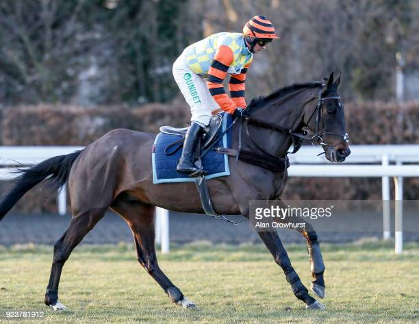 Might Bite galloping after racing at Kempton Park racecourse on February 24 2018 in Sunbury England