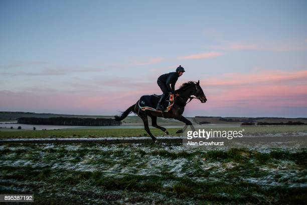 Might Bite is ridden up the gallops at Nicky Hendersons Seven Barrows stables on December 19 2017 in Lambourn United Kingdom