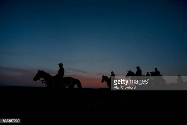 Might Bite walking back down the all weather gallop at Nicky Hendersons Seven Barrows stables on December 19 2017 in Lambourn United Kingdom