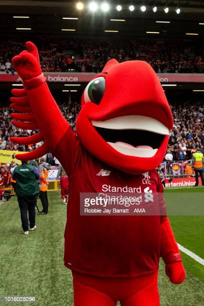 Mighty Red mascot of Liverpool during the Premier League match between Liverpool FC and West Ham United at Anfield on August 12 2018 in Liverpool...