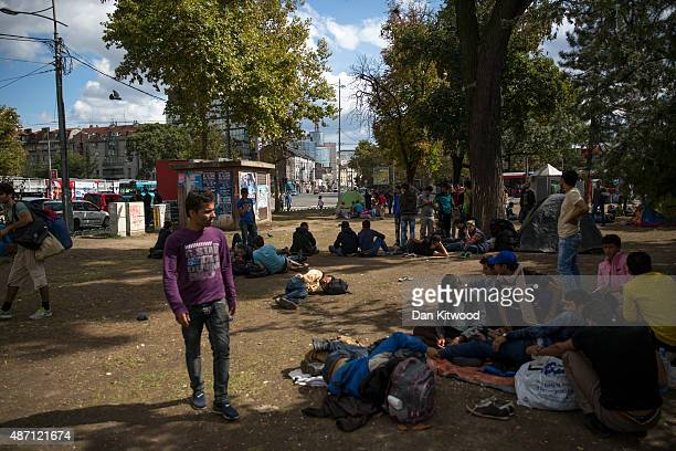 Migrant families gather in a public park near the train station September 6 2015 in Belgrade Serbia Many migrants short on financial resources and...