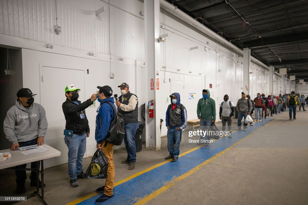 Immigrant Agricultural Workers Critical To U.S. Food Security Amid COVID-19 Outbreak : News Photo