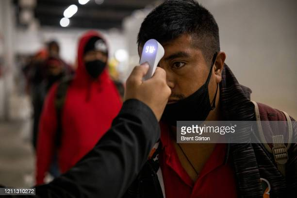 Migrant farm laborers with Fresh Harvest working with an H-2A visa have their temperature checked and are asked questions about their health before...
