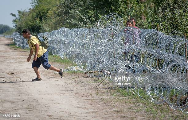 A migrant runs to the woods as others scramble through the border fence between Serbia and Hungary close to the village of Roszke on August 30 2015...