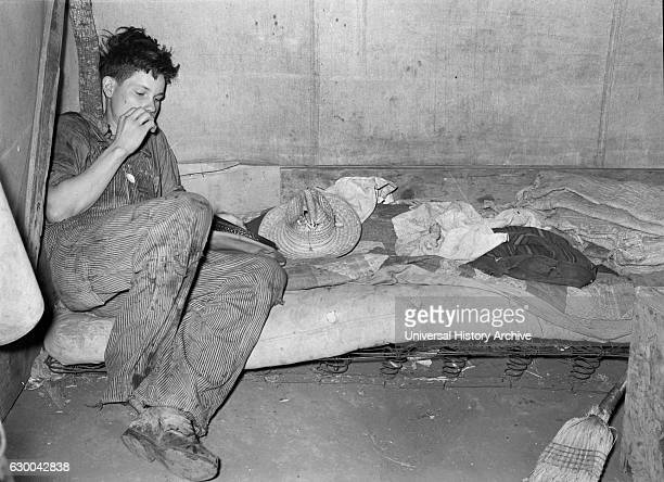 Migrant Worker's Son in Tent Home Harlingen Texas USA Russell Lee February 1939