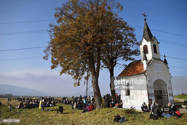 Migrants are escorted by police through fields towards busses which will take them to Brezice refugee camp on October 26 2015 in Rigonce Slovenia...