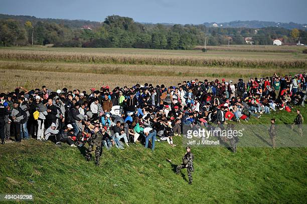 Migrants are escorted through fields by police and the army as they are walked from the village of Rigonce to Brezice refugee camp on October 24,...