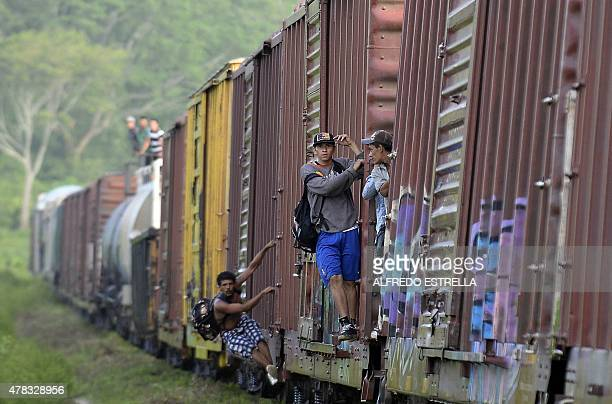 Migrants are seen on board of a train in Chacamax Chiapas state Mexico on June 20 2015 Hundreds of Central American migrants arrive in Mexico on...