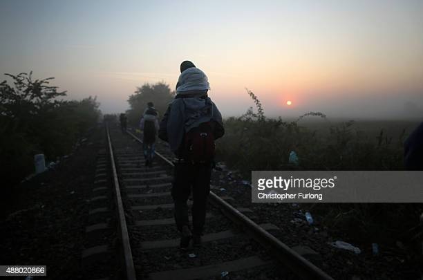 Migrants arrive at dawn at the Hungarian border with Serbia on September 13 2015 in Roszke Hungary A record number of 4000 people crossed the...