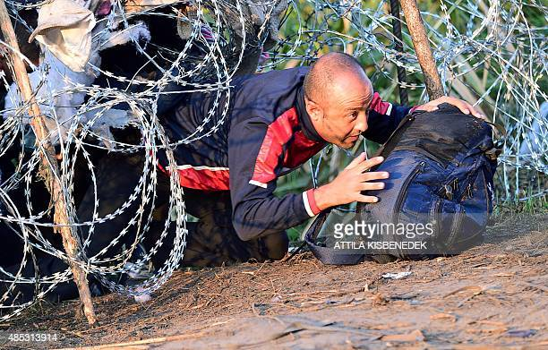 Migrants crawl under a barbed fence at the HungarianSerbian border near Roszke on August 27 2015 As Europe struggles with its worst migrant crisis...